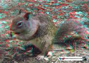 Прикрепленное изображение: normal_3d_stereo_kartinki_stereofanat.com_113.jpg